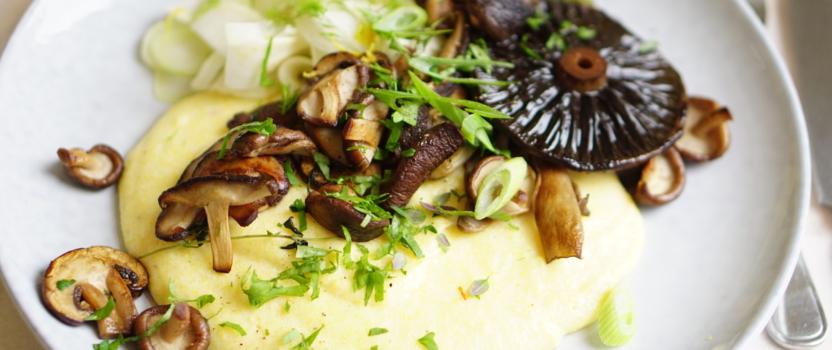 CHEESY CREAMY POLENTA MET BOSPADDENSTOELEN | vegetarisch en glutenvrij kerst-hoofdgerecht
